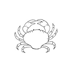 Underwater sketch with black-white crab isolated on white background. Nautical illustration for print, card, poster, colouring book. Contour picture.