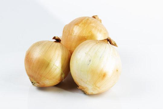 fresh onion isolated