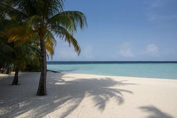 Tropical beach at lagoon in Maldives
