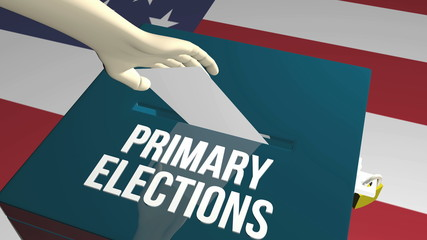 Primary elections ballot