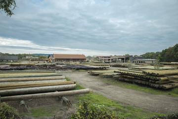 Scierie de poteaux en bois en Moselle