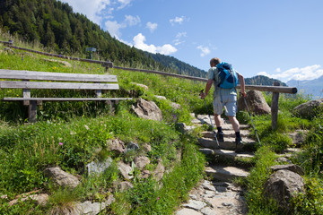 Wanderweg in den Alpen