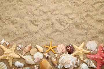 Seashells and starfishes on beach sand