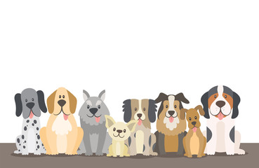 Herd of dogs background illustration with editable blank space. Sat dogs in front view position. Vector illustration.