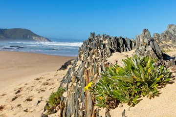 A landscape image of Nature's Valley beach in the Western Cape, South Africa. This is a popular holiday destination on the Garden Route.
