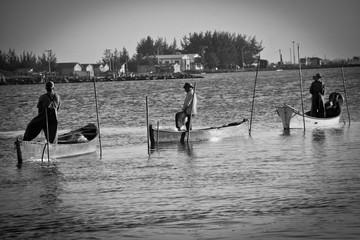 Pescaria com Boto