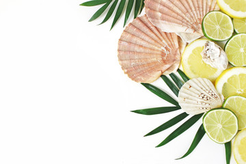 Composition of exotic seashells, oysters, lime and lemons on lush green palm leaves isolated on white wooden background. Tropical summer vacation and food concept. Flat lay, top view.