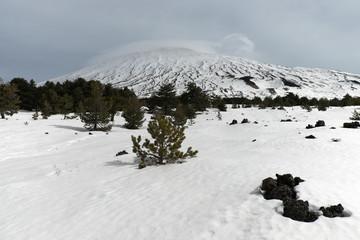 Wall Mural - Winter Landscape Fiera Plateau In Etna Park, Sicily