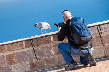 Man taking a bird picture with his cellphone