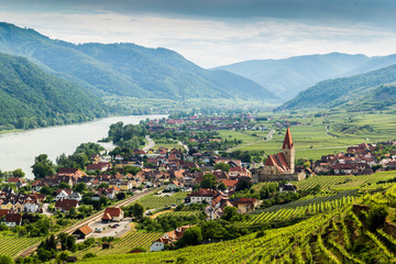 Scenic View into the Wachau with the river Danube and town Weissenkirchen in Lower Austria. Wall mural