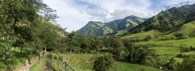 Panorama de la Vallée de Cocora, Salento, Colombie