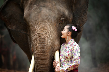 Beautiful young woman dressed in native dress and elephant village, Surin, Thailand.