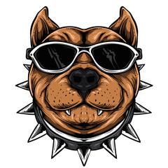 Funky dog