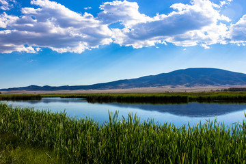 View of the great marsh at Monte Vista National Wildlife Refuge in southern Colorado, with the San Juan Mountains reflected in the water