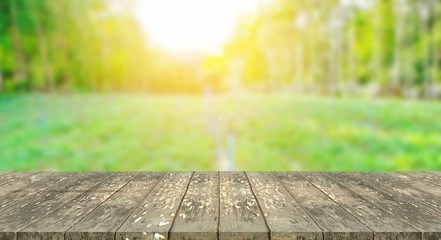 tabletop with burred nature background