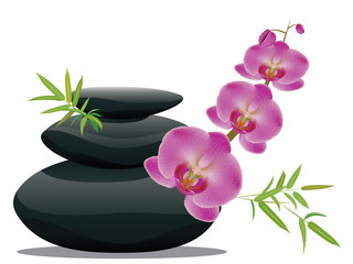 Pebbles with orchid