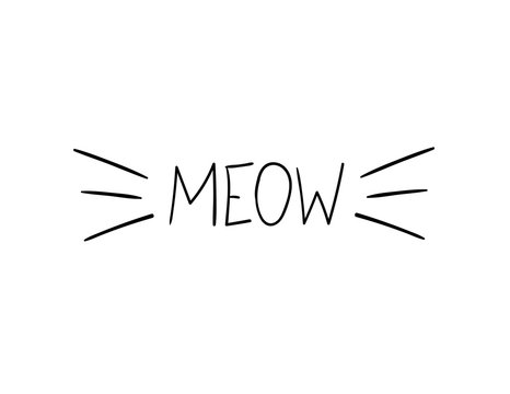 Vector Meow Illustration, Cat Whiskers Hand Drawn Illustration.