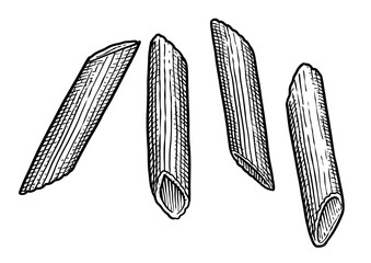 Penne rigate, pasta illustration, drawing, engraving, ink, line art, vector