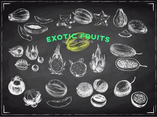 Beautiful vector hand drawn exotic fruits Illustrations set.