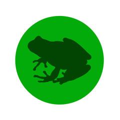 Icono plano silueta rana en circulo verde