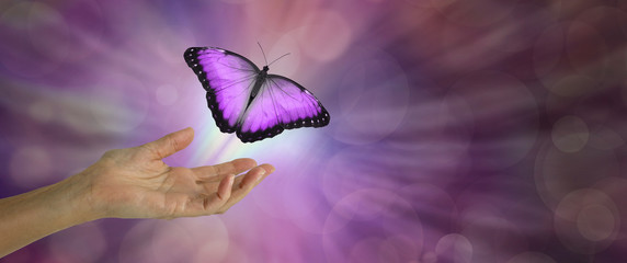 Spirit Release depicted by a magenta Butterfly taking flight - female hand with open palm and a large magenta pink butterfly rising up and away against a purple bokeh background and copy space