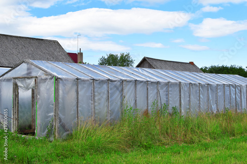 Plastic Greenhouse For Growing Vegetables And Greens On Farm Field Overgrown In Long Grass