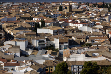 Baeza (Jaén) Spain. Overview of the town of Baeza from the bell tower of the Cathedral of the Nativity of Our Lady of Baeza