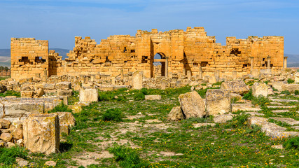 Ruins on the grass of Madauros, a Roman-Berber city in the old province of Numidia, Algeria