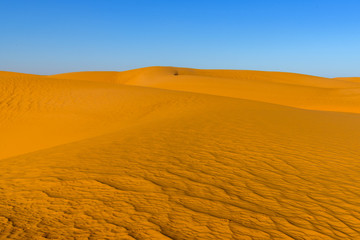 Beautiful view of the Sahara desert
