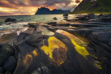 Wall Mural - Sunset over Uttakleiv beach on Lofoten islands in Norway