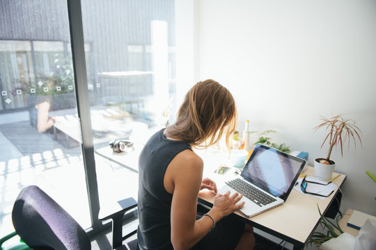 woman working in sunny modern office