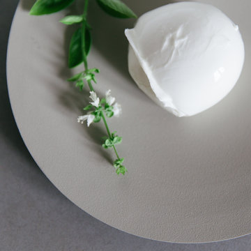 Mozzarella di buffalo served on a neutral plate with blooming basil.