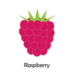 Raspberry in cartoon style, card with fruit for kid, preschool activity for children, vector illustration
