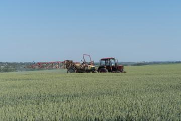 Farmer spraying pesticides in green wheat field