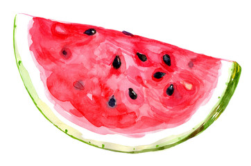 watermelon watercolor illustration insolated on white background