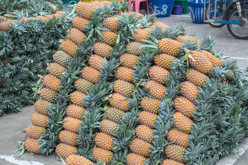 Pineapple background in the  local market in Thailand for sale.fresh pineapple from farm to the customer.