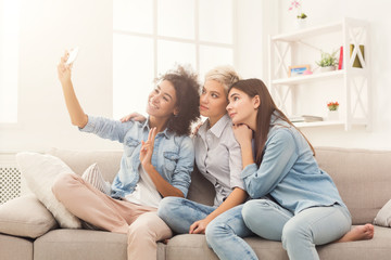 Happy friends taking selfie at home