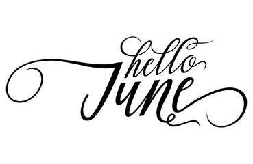 Hello June - Summer lettering, vector handwritten typography. Isolated calligraphy design on white background.