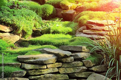 Beautiful view on cute backyard in sunny day, fresh green grass lawn in  sunlight, - Beautiful View On Cute Backyard In Sunny Day, Fresh Green Grass Lawn