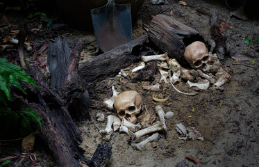 Two Skulls and pile bone on the ground hole in graveyard