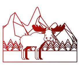 moose in winter forest landscape