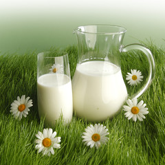 Milk in jar and glass on flower meadow