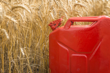 Wall Mural - Fuel for agricultural machines. Gas can in the wheat field. Bio diesel and petrol concept.