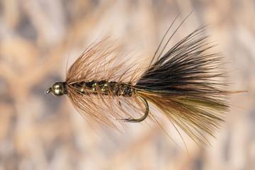 Brown fly lure, Colorado, USA