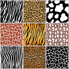 set safari jungle animal fur stripe animals bengal tiger giraffe zebra cow snake texture pattern seamless repeating white black orange brown