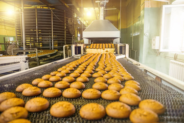 Cakes on automatic conveyor belt or line, process of baking in confectionery culinary factory or plant. Food industry, cookie and other sweet breadstuff production