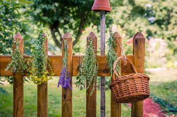 Door stickers Condiments Kräuter im Garten