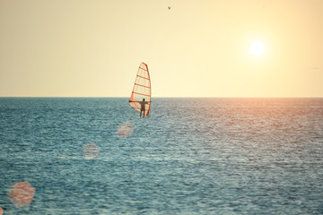 Windsurfing on the sea surface at sunset in the sun, the concept of outdoor activities