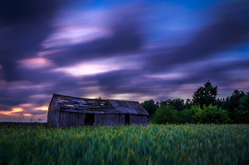 evening, fields