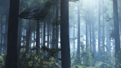 Light among the trees. Sunlight in the forest. Pine forest at dawn. Pine trees in the light.